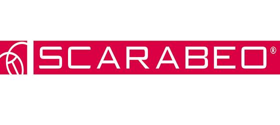 https://salledebains86.com/wp-content/uploads/2018/09/Logo_Scarabeo.jpg